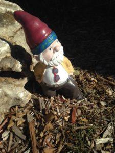 Cool gnome