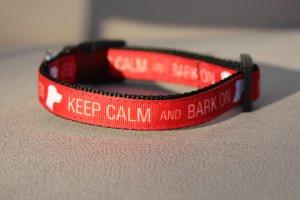 Keep Calm and Bark On