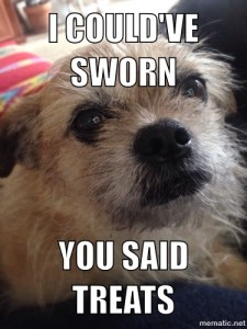 You said treats!