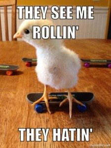 Don't your chicks skateboard?