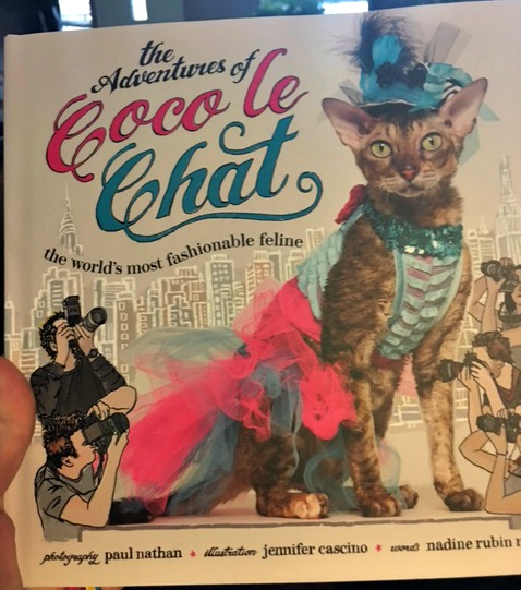 Coco le Chat book review