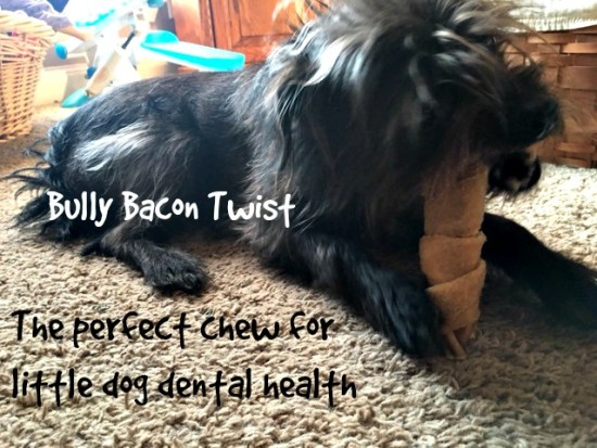 Bully Bacon Twist from Jones Natural Chews