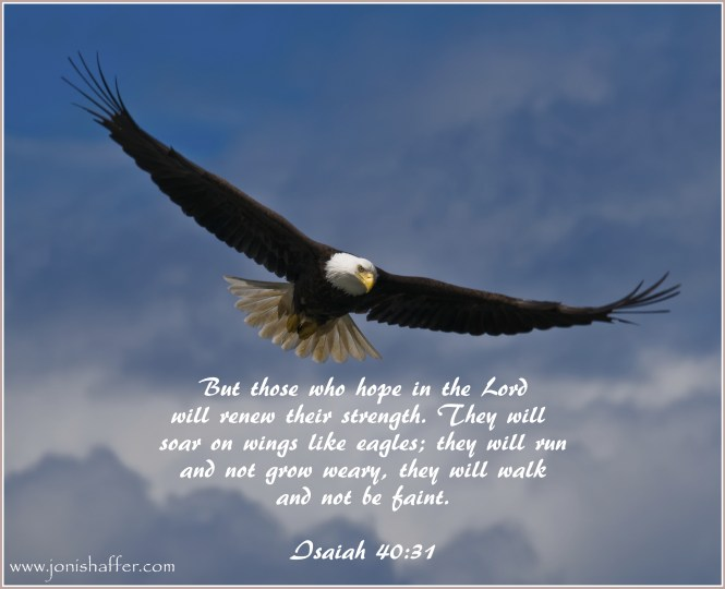 Eagles Don T Just Fly They Soar