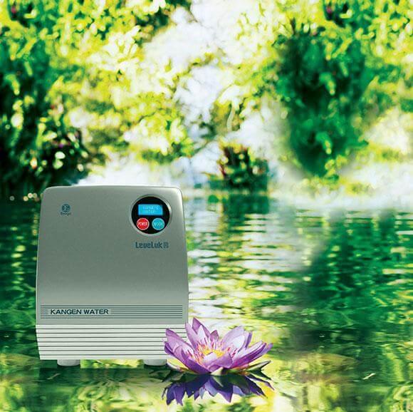urządzenie do jonizacji wody Leveluk R