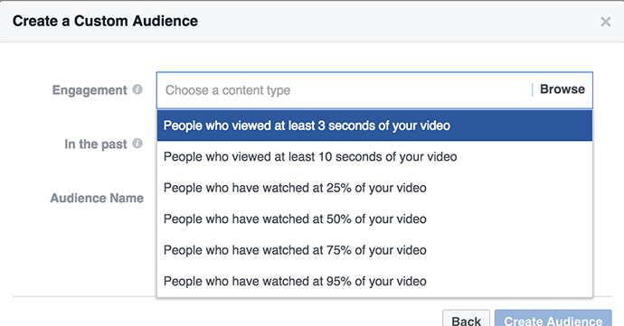 Video Views Custom Audience