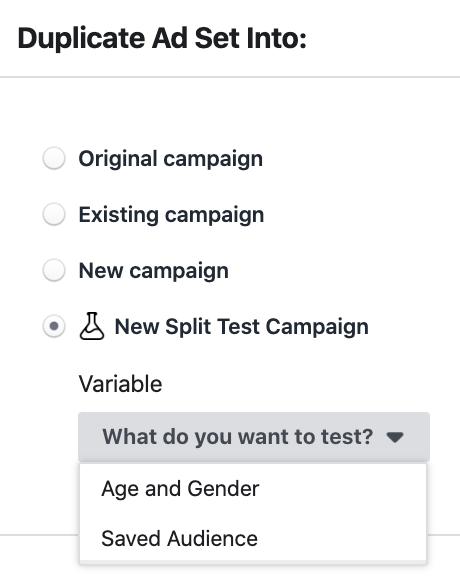 Facebook Ad Set Split Test Duplication
