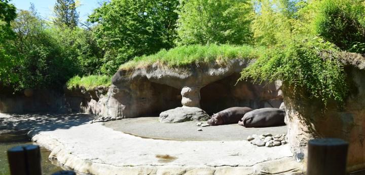 oregon-zoo-008