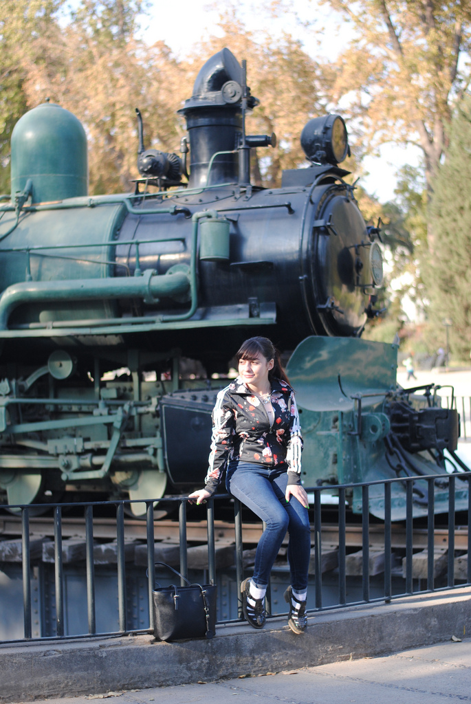 museo-ferroviario-03