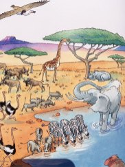 Livre sur les animaux de la savave