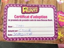 adopter un chien peluche