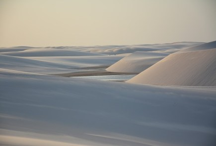 Leadership Lessons From the Sands of the Dune