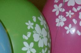 Joplin Indoor Birthday Party Places