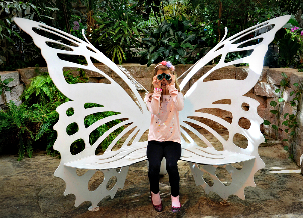 butterfly palace bench