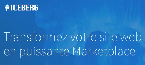Logo-Iceberg-marketplace