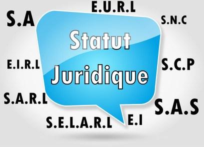 Statut Juridique faire du dropshipping