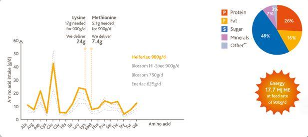 Infographic on Hefferlac milk replacer