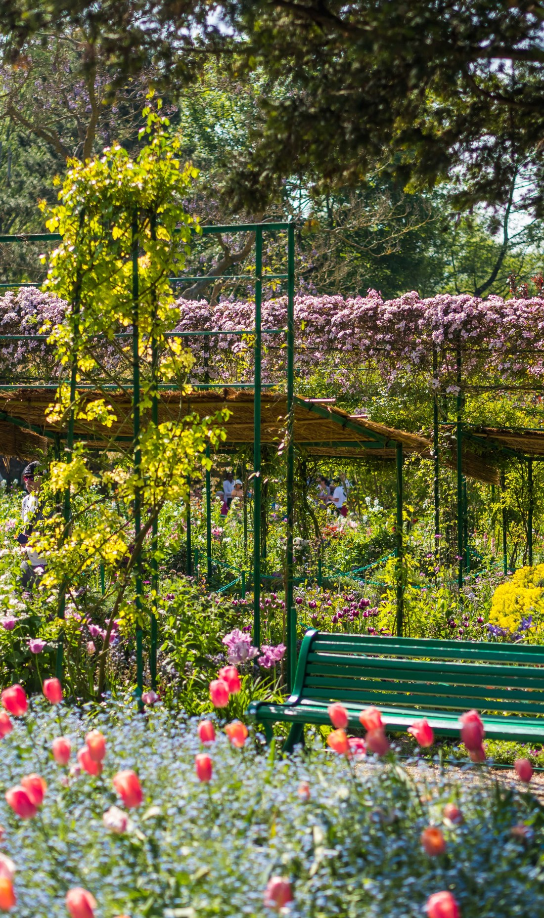 Jordan Taylor C - An Insider's Guide to Giverny, giverny, travel, insider's guide, insiders guide to giverny, paris, paris france, france travel, giverny travel, guide to giverny, paris day trip, giverny day trip