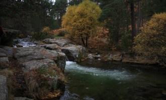 Cotos, Sierra de Madrid