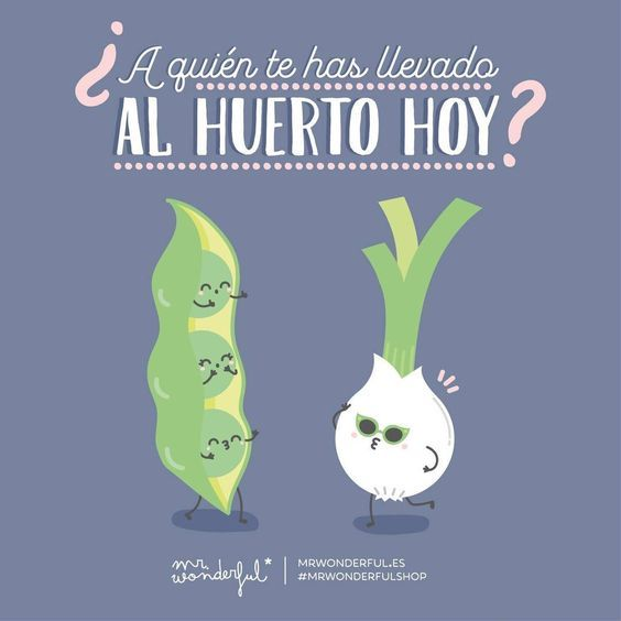 frases-de-mr-wonderful-6
