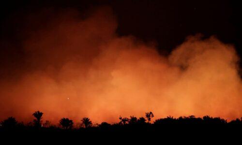 Governo usa produto químico que causa danos para apagar incêndios