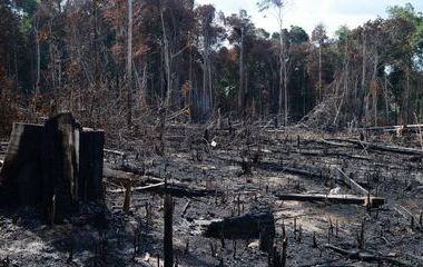 Ibama diz à Justiça que suspendeu compra emergencial de retardante de fogo