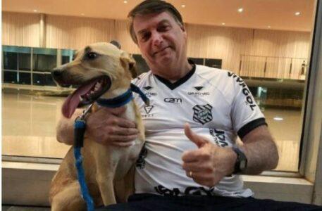 Bolsonaro afirma: Vacina obrigatória só para Faísca (cachorro)