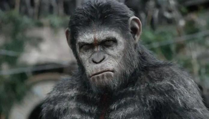 Cesar no filme Planeta dos Macacos