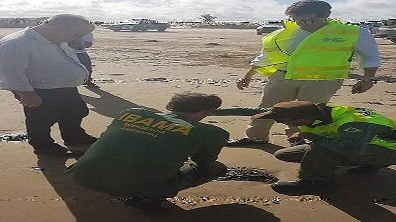 Governo tem suspeita sobre origem de manchas de óleo, diz Bolsonaro.