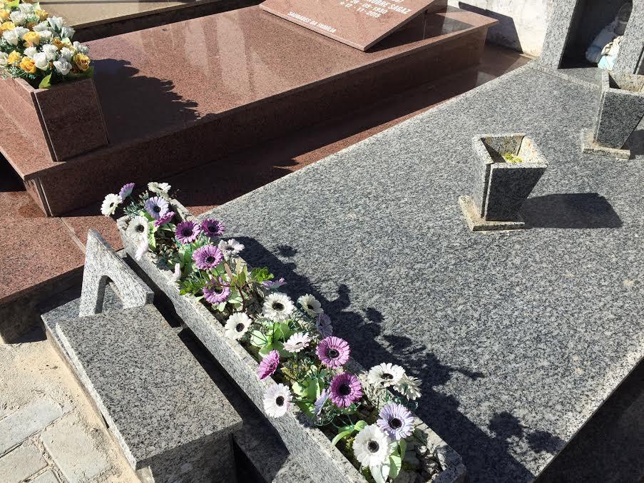 cemiterio-ingleses-decreto-dengue-03