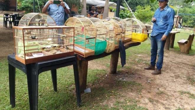 homem-e-multado-em-r-135-mil-por-manter-aves-silvestres-jno