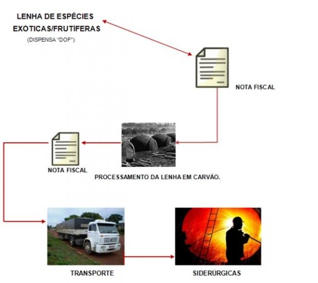 Fluxograma da maneira que se dava a falsificação de notas fiscais | Reprodução PF