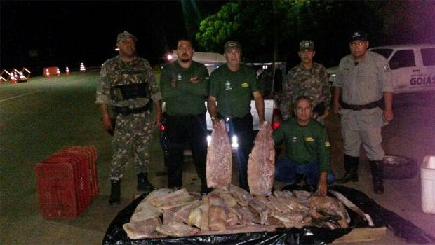 Semarh apreende mais de 1,5 mil quilos de pescado durante Operação Araguaia 2014