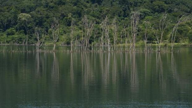 Berço das águas, Cerrado precisa de proteção para garantir abastecimento no país
