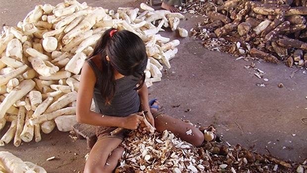 OECAé um importante instrumento na luta contra o trabalho infantil