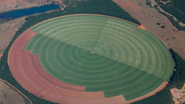 Espaço de cultivo faz círculo no meio da vegetação nativa:expansão da fronteira agrícola na berlinda | Foto: Leo Drumond/Nitro