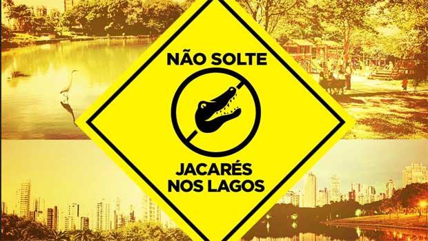 """Após caso inusitado, Prefeitura de Goiânia avisa: """"Não solte jacarés nos lagos"""""""