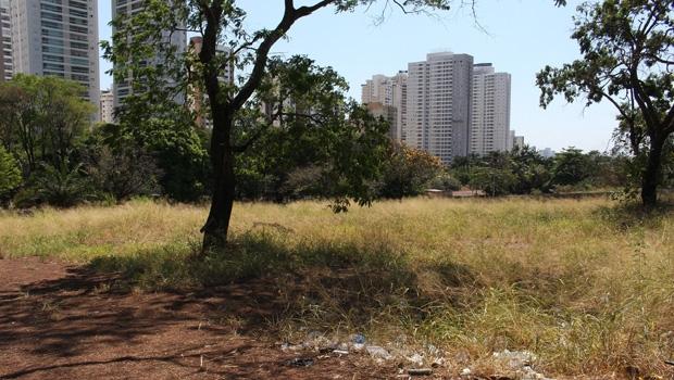 Terreno no Jardim Goiás, de Lourival Louza, recebeu atestado ilegal | Divulgação