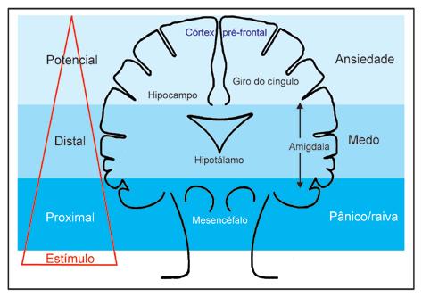 Ansiedade e estresse são a mesma coisa?