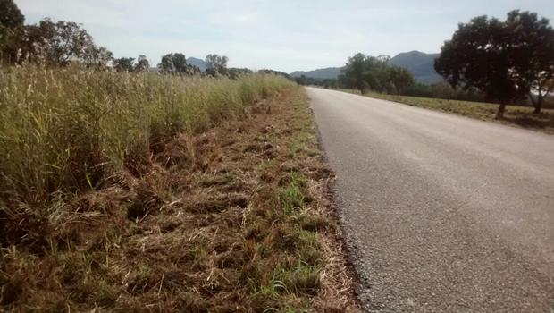 Manutenção chega a 50% da malha rodoviária estadual, informa Agetop