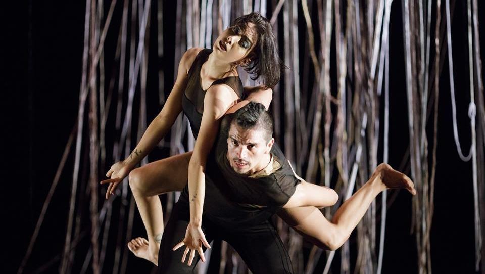 Dança em Redes une diversas linguagens da dança e promove a troca de informação em Goiânia