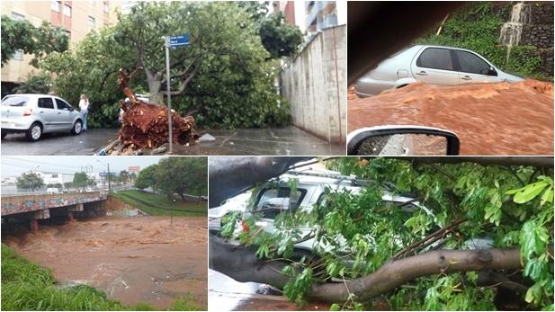 Vídeos mostram estragos do temporal que assolou Goiânia neste domingo