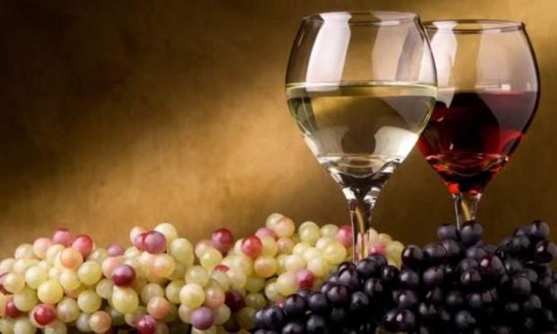 vinho-e-uvas-1-cropped-bebidas-vinhos-uvas