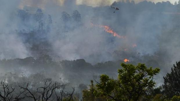 Desmatamentos, queimadas e emissões de gases no Cerrado serão monitorados