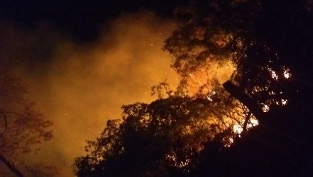 Incêndio de grandes proporções atinge Parque Ecológico de Morrinhos