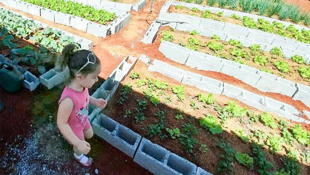 Goiana tem projeto de horta comunitária selecionado para programa do governo dos EUA