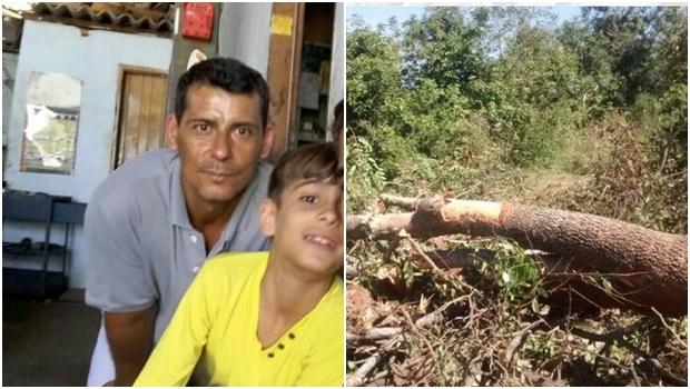 Pai e filho morrem no interior de Goiás após árvore cair sobre eles