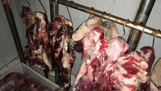 Ação contra comércio de carne clandestina apreende mais de 8 toneladas de produtos