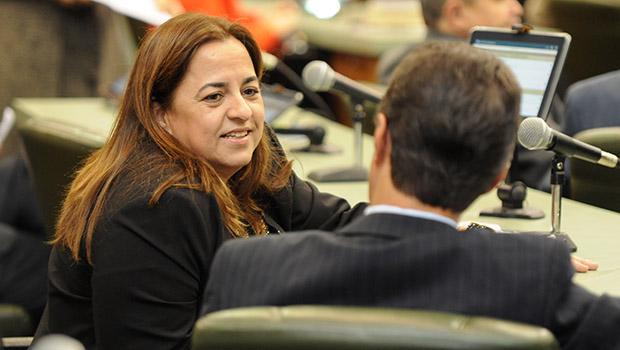 Santana Gomes diz que todos os prefeitos querem apoiar Eliane Pinheiro
