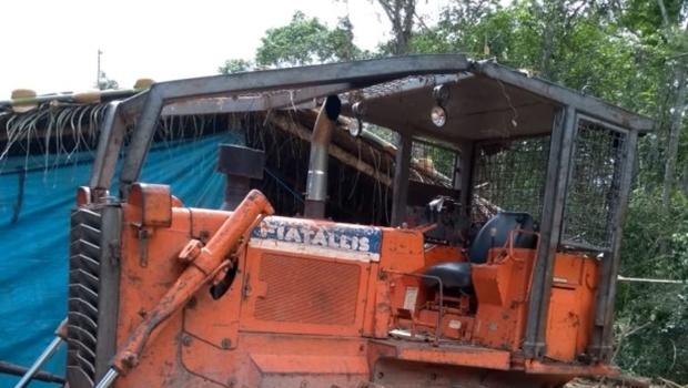 Dupla é presa por desmatar floresta de preservação permanente em Goiás