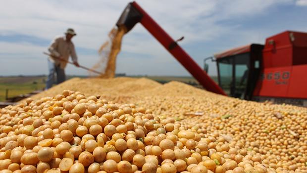 Exportações goianas apontam para novo recorde